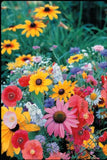 The Dirty Gardener Wildflower Perennial Seed Mix, 3 Grams