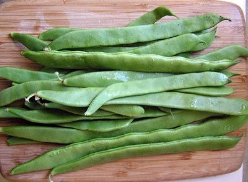The Dirty Gardener: Seed; Bean Romano Italian Pole Beans, 50 Seeds