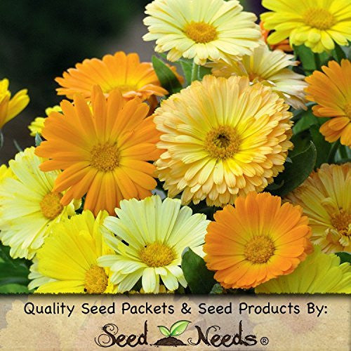 The Dirty Gardener Calendula Flower Mix, 500 Seeds