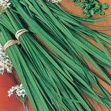 The Dirty Gardener Heirloom Chives