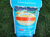 The Dirty Gardener Boulevard Lawn Seed Patch, 90 Spots/250 Sq Feet