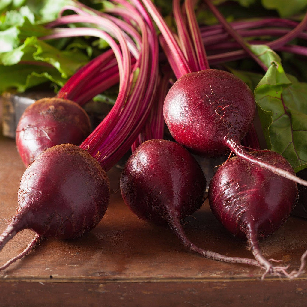 """Bull's Blood"" Heirloom Beet Seed (Qty 50 Seeds) From The Dirty Gardener -"
