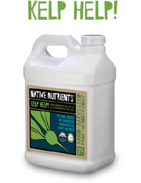 Kelp Liquid - Native-Nutrients