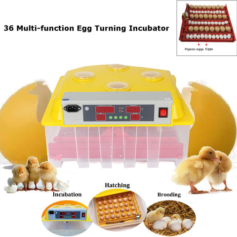 ABS 36 Eggs Automatic Incubator Digital Hatching Poultry Chicken Temperature Control Farm