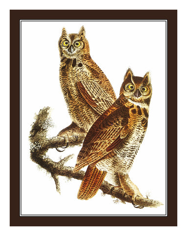 Pair of Great Horned Owls Birds Illustration by John James Audubon Counted Cross Stitch Pattern