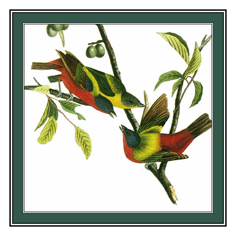Painted Buntings Bird Illustration by John James Audubon Counted Cross Stitch Pattern