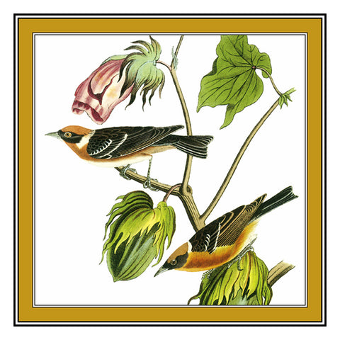 Pair of Bay Warblers Bird Illustration by John James Audubon Counted Cross Stitch Pattern