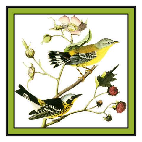 Pair of Magnolia Warblers Bird Illustration by John James Audubon Counted Cross Stitch Pattern