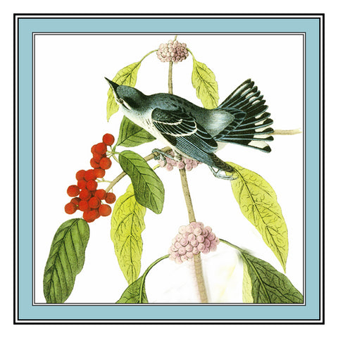 Cerulean Warbler Bird Illustration by John James Audubon Counted Cross Stitch Pattern