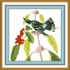 Cerulean Warbler Bird Illustration by John James Audubon Counted Cross Stitch or Counted Needlepoint Pattern
