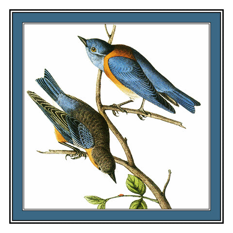 Pair of Bluebirds Bird Illustration by John James Audubon Counted Cross Stitch Pattern