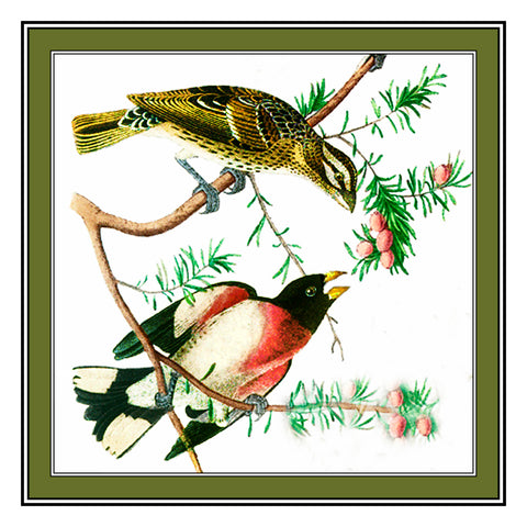 Pair of Grosbeaks Bird Illustration by John James Audubon Counted Cross Stitch Pattern