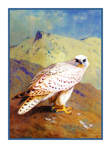 Gyr Falcon by Naturalist Archibald Thorburn's Bird Counted Cross Stitch or Counted Needlepoint Pattern