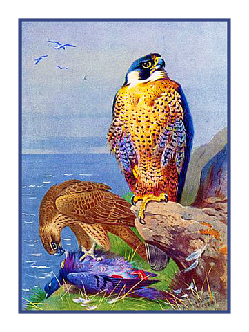 Eurasian Peregrin Falcon by Naturalist Archibald Thorburn's Bird Counted Cross Stitch or Counted Needlepoint Pattern