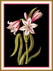 Asphodel Lilly Flowers by Mary Delany Counted Cross Stitch or Counted Needlepoint Pattern - Orenco Originals LLC