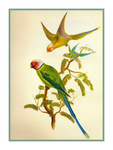 Blossom Headed Parakeets by Naturalist John Gould Birds Counted Cross Stitch Pattern