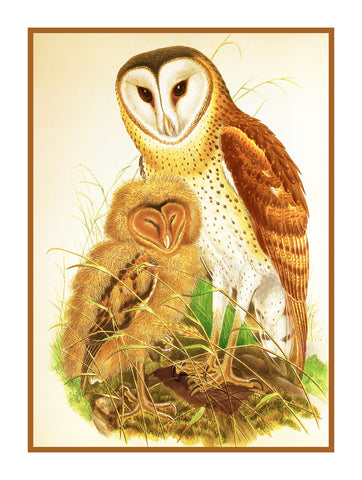Pair of Grass Owls by Naturalist John Gould of Birds Counted Cross Stitch Pattern