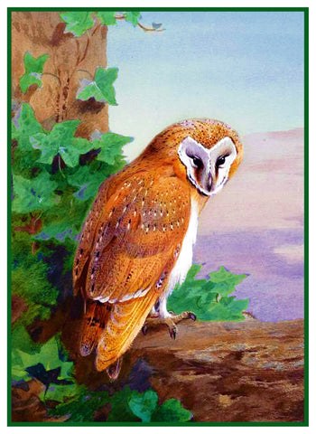Barn Owl By Naturalist Archibald Thorburn's Bird Counted Cross Stitch or Counted Needlepoint Pattern