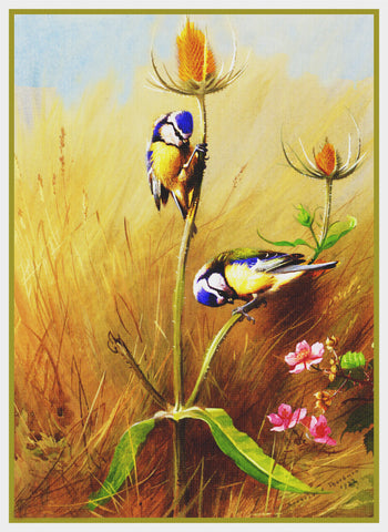 Bluetit Birds on Teasel by Naturalist Archibald Thorburn's Counted Cross Stitch Pattern
