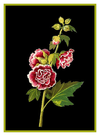 Pink Hollyhock Flowers by Mary Delany Counted Cross Stitch or Counted Needlepoint Pattern