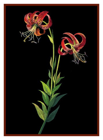 Tiger Lily Flowers by Mary Delany Counted Cross Stitch or Counted Needlepoint Pattern