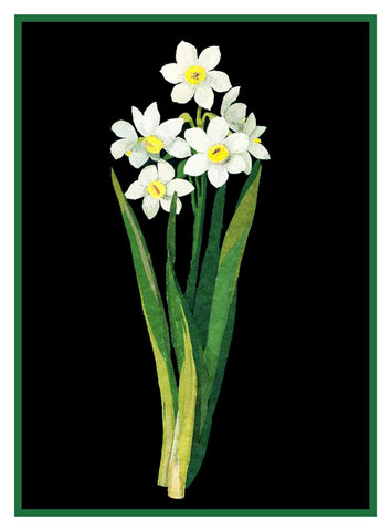 Narcissus Flowers by Mary Delany Counted Cross Stitch or Counted Needlepoint Pattern