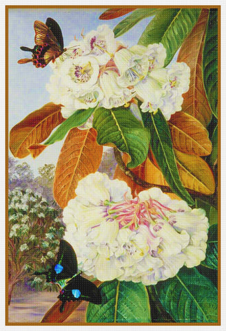 Marianne North's Butterfly and Rhododendron Flowers Counted Cross Stitch Pattern