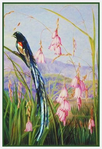 Marianne North's Long Tailed Finch on Blossoms Counted Cross Stitch Pattern