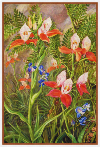 Marianne North's South African Ground Orchid Blossoms Counted Cross Stitch Pattern