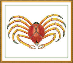 Fallours' Renard's Fantastic Colorful Tropical Crab 4 Counted Cross Stitch or Counted Needlepoint Pattern