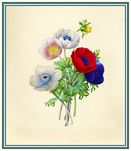 Anemone Flowers Inspired by Pierre-Joseph Redoute Counted Cross Stitch Pattern DIGITAL DOWNLOAD