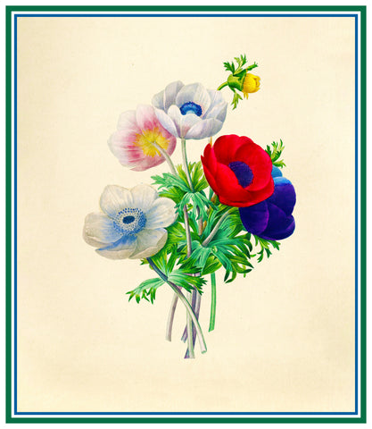 Anemone Flowers Inspired by Pierre-Joseph Redoute Counted Cross Stitch Pattern