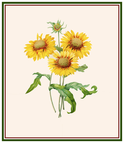 Blanket Sunflowers Inspired by Pierre-Joseph Redoute Counted Cross Stitch Pattern