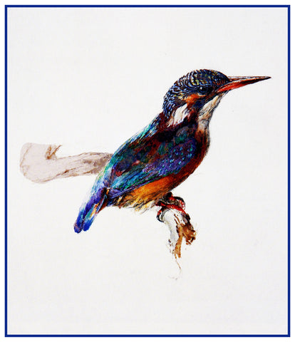 Study of a Kingfisher Birds by John Ruskin Counted Cross Stitch Pattern