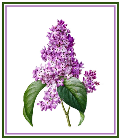 Lilac Flower Inspired by Pierre-Joseph Redoute Counted Cross Stitch Pattern DIGITAL DOWNLOAD