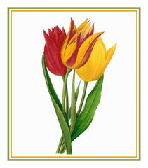 Bouquet of Tulip Flowers Inspired by Pierre-Joseph Redoute Counted Cross Stitch Pattern DIGITAL DOWNLOAD