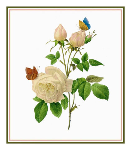 Tea Rose Flowers Inspired by Pierre-Joseph Redoute Counted Cross Stitch Pattern DIGITAL DOWNLOAD