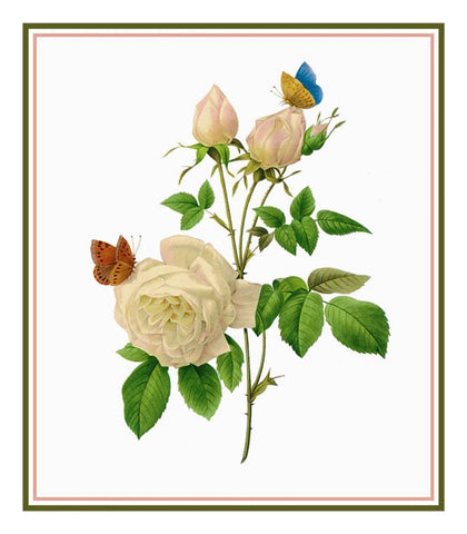 Tea Rose Flowers Inspired by Pierre-Joseph Redoute Counted Cross Stitch Pattern