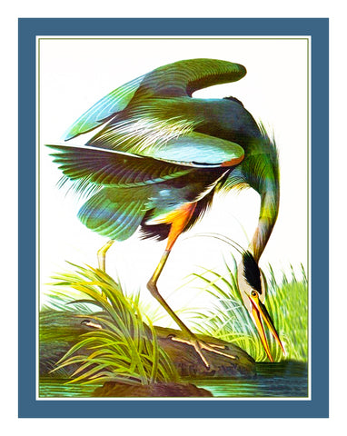 Blue Heron Bird Illustration by John James Audubon Counted Cross Stitch Pattern
