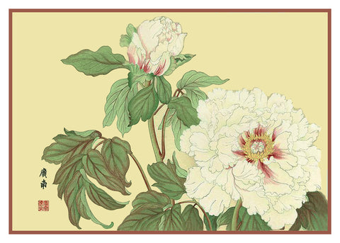 Tanigami Konan Asian White Peony Flowers Counted Cross Stitch or Counted Needlepoint Pattern