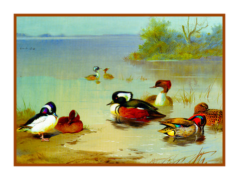 Ducks Seaside by Naturalist Archibald Thorburn's Birds Counted Cross Stitch or Counted Needlepoint Pattern