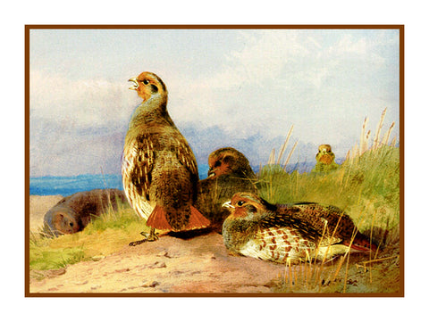Red Partridges by Naturalist Archibald Thorburn's Birds Counted Cross Stitch or Counted Needlepoint Pattern