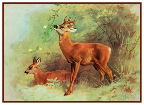Roe Deer by Naturalist Archibald Thorburn's Animal Counted Cross Stitch Pattern