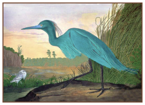 Little Blue Heron Bird Illustration by John James Audubon Counted Cross Stitch Pattern