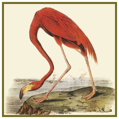 American Flamingo Bird Illustration by John James Audubon Counted Cross Stitch Pattern