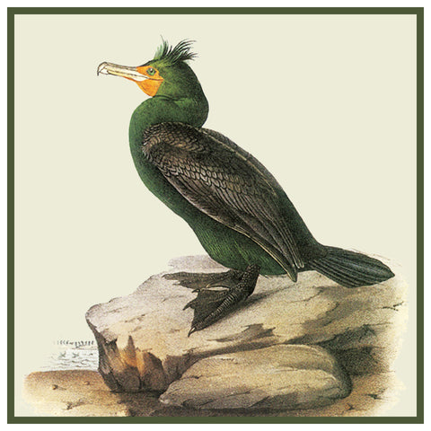 Double Breasted Cormorant Bird Illustration by John James Audubon Counted Cross Stitch Pattern
