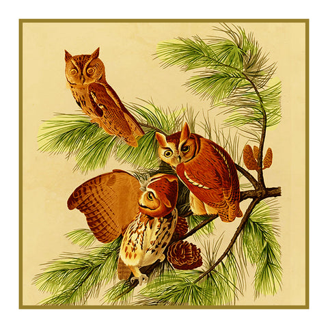 Screech Owls Bird Illustration by John James Audubon Counted Cross Stitch Pattern