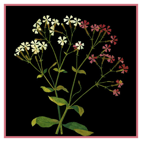 Lobelâ-™s Catchfly Flower by Mary Delany Counted Cross Stitch or Counted Needlepoint Pattern