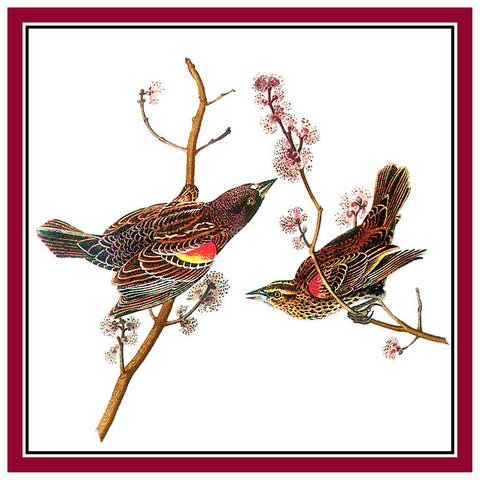 Pair of Red Breasted Blackbirds Bird Illustration by John James Audubon Counted Cross Stitch Pattern