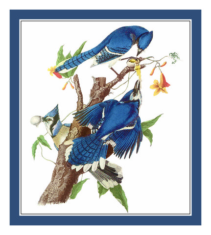 Blue Jays Bird Illustration by John James Audubon Counted Cross Stitch or Counted Needlepoint Pattern